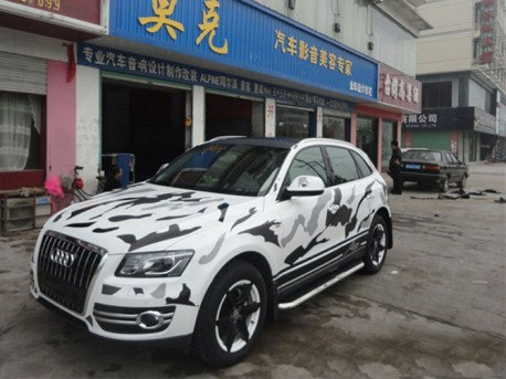Audi Q5 is a Cow in China