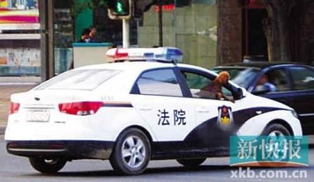 Dog in police car in China