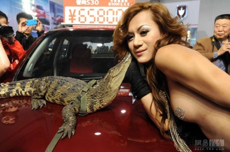 Dangerous Animals at the Guiyang Auto Show in China, Part 2