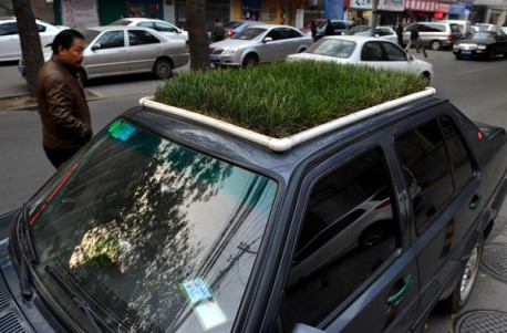 Getting Green with a Lawn on top of your Car in China