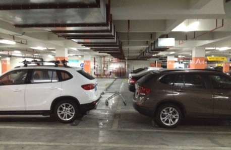 Will the real BMW X1 please Rise?