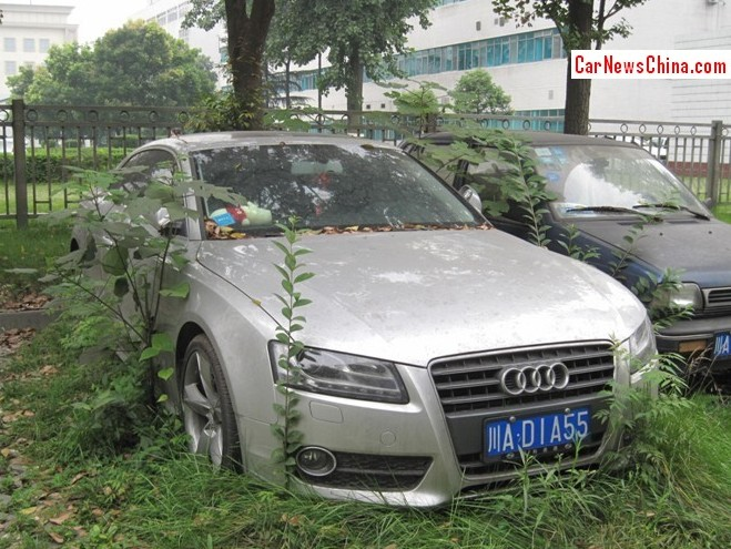Nature takes control of an Abandoned Audi A5 Coupe in China