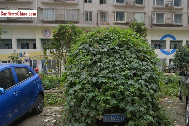 Police in China takes care of Zombie Car