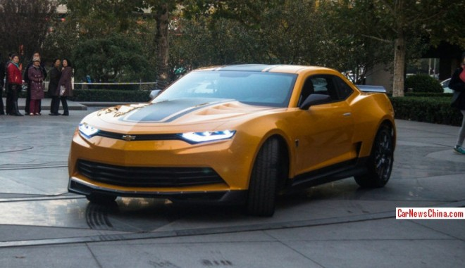 bumblebee-china-more-2