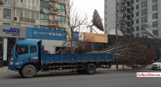 truck-tree-china-3
