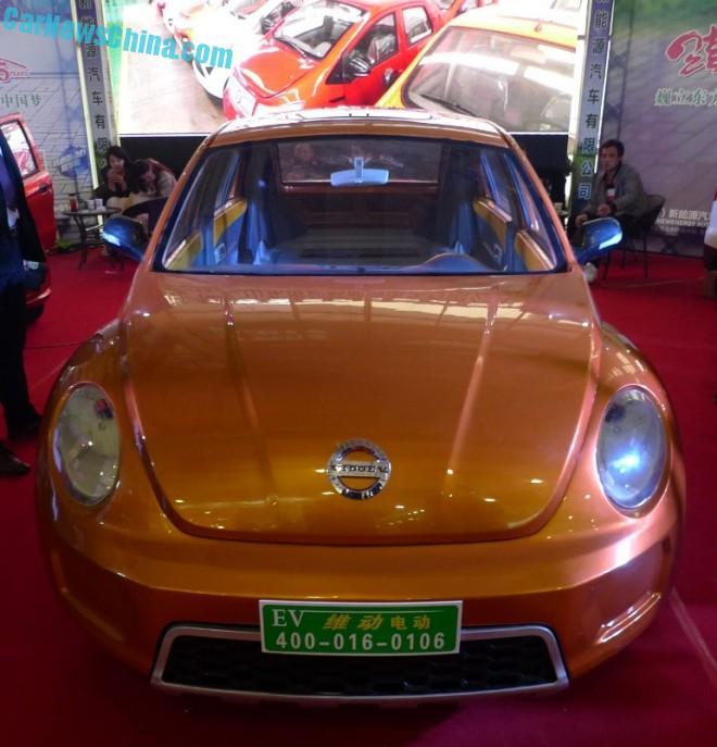 vedeoev-beetle-china-lsev-5