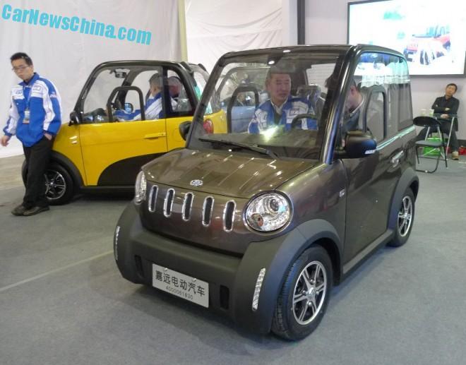jiayuan-ev-china-lsev-5