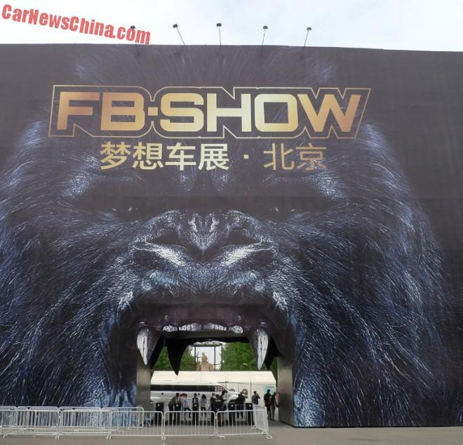 Visit to the FB-Show 2015 in Beijing, an Introduction
