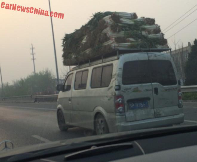 Transporting some Leek on the Roof in China