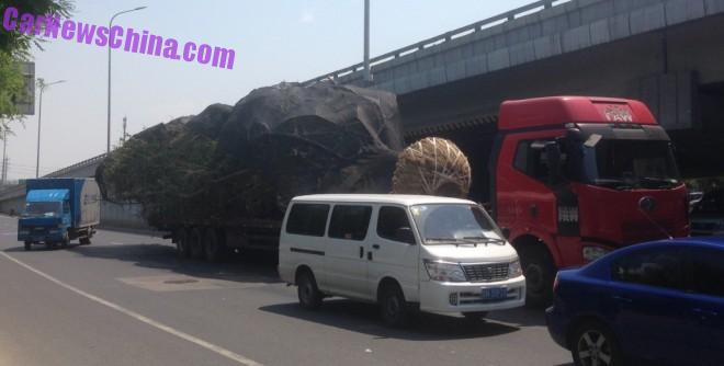 Big Truck transporting a Big Tree in China