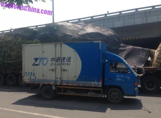truck-tree-china-bj-2