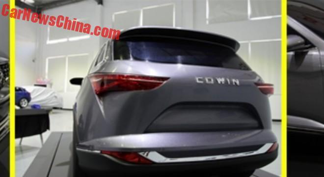 cowin-x5-china-3
