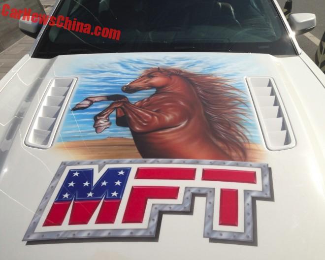 mustang-horses-5