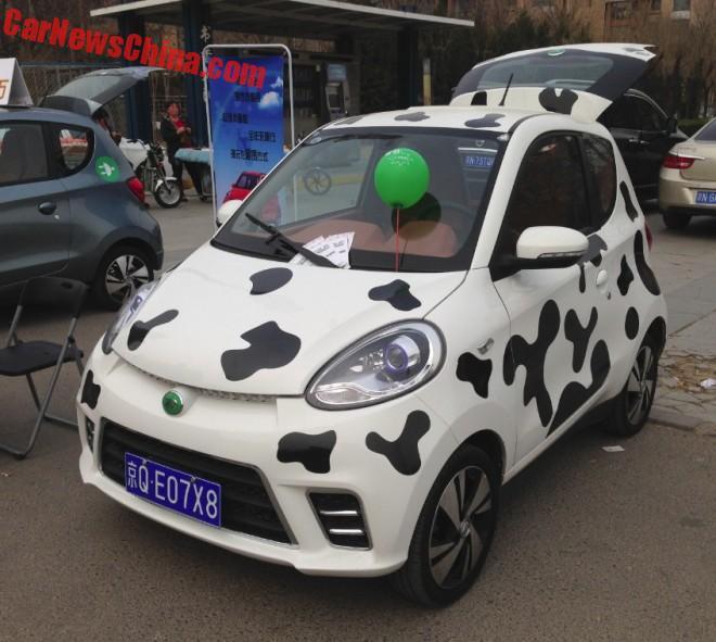 Eye to Eye with the Zhi Dou D2 EV in China