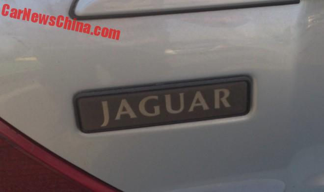 jaguar-sport-china-4