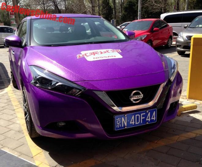 nissan-lannia-purple-7