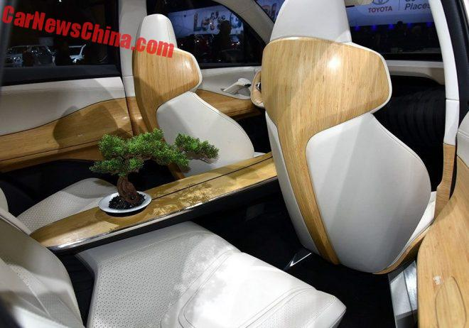 Guangzhou Auto EnSpirit Has An On-board Tree For Green